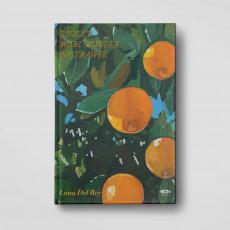Okładka książki Violet robi mostek na trawie  w księgarni SQN Store