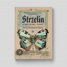 Okładka książki Strzelin na dawnej pocztówce i fotografii w księgarni SQN Store